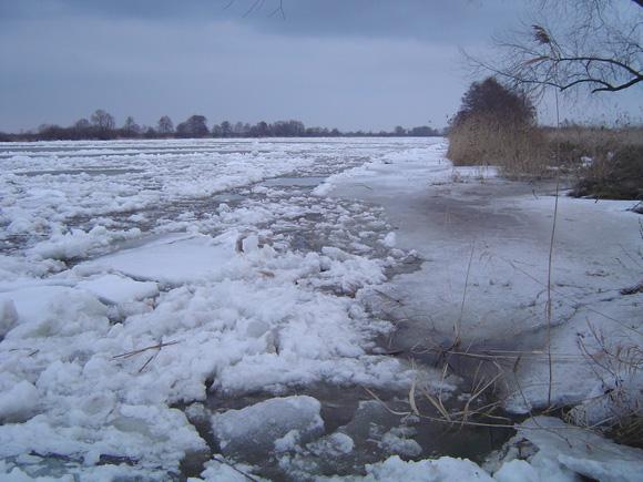 Šylantys orai netrukus turėtų išjudinti ledus ir Nemuno žemupyje. (O. Lidžiaus nuotr., 2009.03.13)