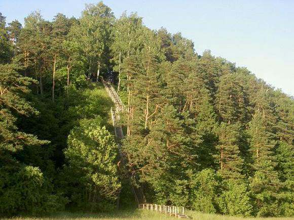 Rambyno kalnas. (silutesetazinios.lt archyvo nuotr.)