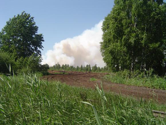 Pamario miškuose gaisringumas jau pasiekė ketvirtą klasę. (silutesetazinios.lt archyvo nuotr.)