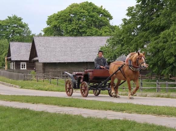 Arklio muziejaus nuotr.
