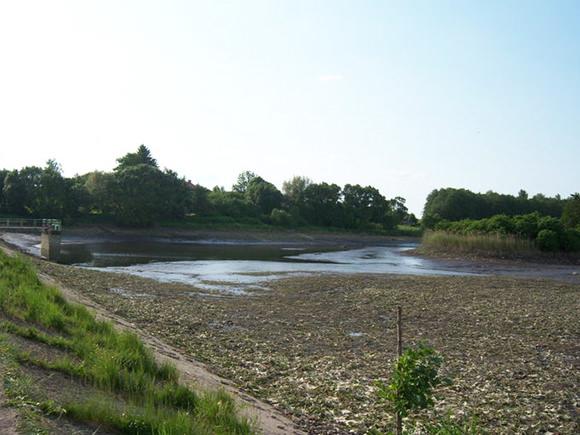 Taip atrodė Degučių tvenkinys po užtvankos avarijos praeitų metų gegužės pabaigoje. Dabar jis vėl sklidinas vandens, jame veisiamos žuvys. (silutesetazinios.lt archyvo nuotr.)