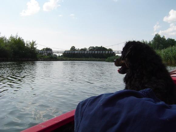 Pakalnės upė. (Oresto Lidžiaus nuotr.)